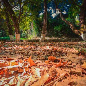 Φθινοπωρινοί προορισμοί Ελλάδα